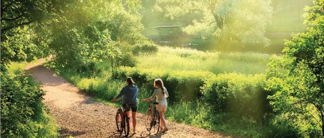 community-thornhill